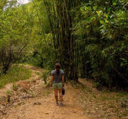 trilha-morro-dos-macacos (9)