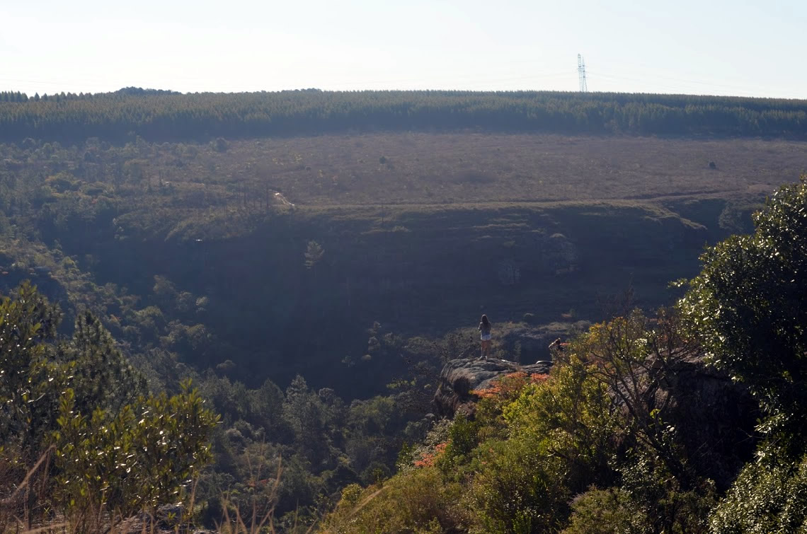 Parque Estadual do Cerrado
